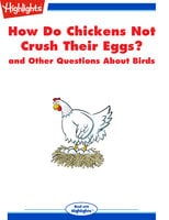 How Do Chickens Not Crush Their Eggs? and Other Questions About Birds - Highlights for Children