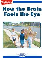 How the Brain Fools the Eye - Carmella Van Vleet