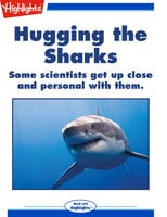 Hugging the Sharks - Dan Risch