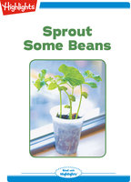 Sprout Some Beans - Highlights for Children