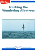 Tracking the Wandering Albatross - Jack Myers
