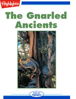 The Gnarled Ancients - Terry Reid