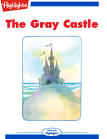 The Gray Castle - Bonnie Highsmith Taylor