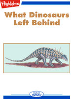 What Dinosaurs Left Behind - Melissa Stewart