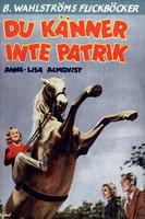 Du känner inte Patrik - Anna-Lisa Almqvist