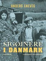 Sigøjnere i Danmark - Anders Enevig