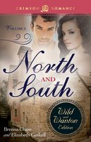North And South: The Wild And Wanton Edition Volume 3 - Elizabeth Gaskell, Brenna Chase