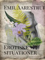 Erotiske situationer - Emil Aarestrup