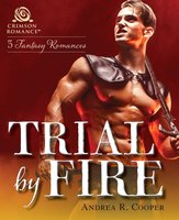 Trial by Fire - Andrea R Cooper