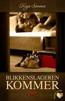 Det erotiske valg: Blikkenslageren kommer - Kaya Sommer