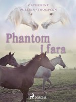 Phantom i fara - Christine Pullein Thompson