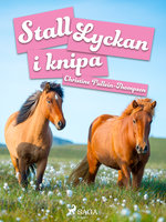 Stall Lyckan i knipa - Christine Pullein Thompson