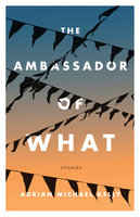 The Ambassador of What - Adrian Michael Kelly