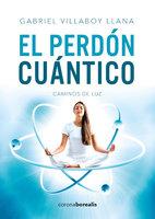 El persón cuántico - Gabriel Villaboy Llana