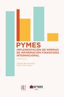 PYMES: implementación de normas de información financiera internacional - Alfredo Borrero Páez, Olson Ortíz Tova