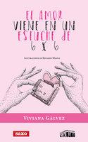 El amor viene en un estuche de 6 x 6 - Viviana Gálvez