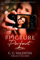 #PicturePerfect - C. G. Valentin