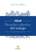 Derecho colectivo del trabajo - Javier Neves Mujica