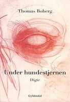 Under hundestjernen - Thomas Boberg