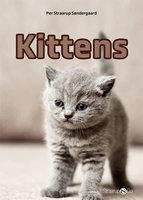 Kittens - Per Straarup Søndergaard