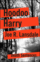 Hoodoo Harry - Joe R. Lansdale