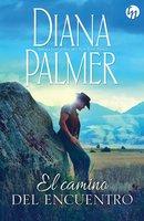 El camino del encuentro - Diana Palmer