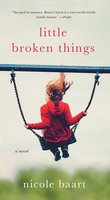 Little Broken Things - Nicole Baart