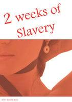 2 weeks of slavery - Sandra Spice