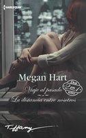 Viaje al pasado - La distancia entre nosotros - Megan Hart