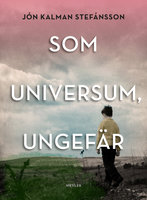 Som universum, ungefär - Jón Kalman Stefánsson
