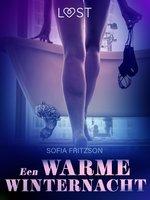 Een warme winternacht - erotisch verhaal - Sofia Fritzson