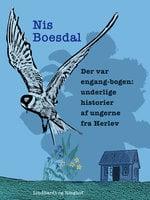 Der var engang-bogen. Underlige historier af ungerne fra Herlev - Nis Boesdal
