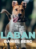 Laban - Daniel Berg