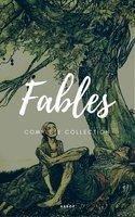 Aesop's Fables (NTMC Classics) - Aesop