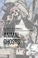 Animal Ghosts - Elliott O'Donnell