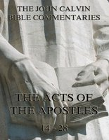 John Calvin's Commentaries On The Acts Vol. 2 - John Calvin