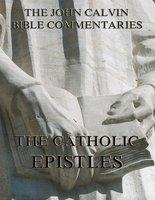 John Calvin's Commentaries On The Catholic Epistles - John Calvin