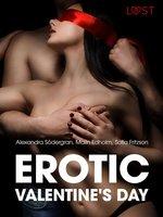 Erotic Valentine s Day - 5 erotische verhalen - Sofia Fritzson, Alexandra Södergran, Malin Edholm