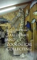 Taxidermy and Zoological Collecting - W. J. Holland,William T. Hornaday