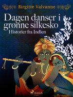 Dagen danser i grønne silkesko. Historier fra Indien - Birgitte Valvanne