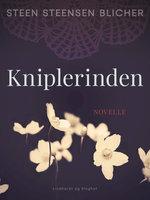 Kniplerinden - Steen Steensen Blicher