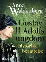 Gustav II Adolfs ungdom: historisk berättelse - Anna Wahlenberg