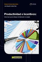 Productividad e incentivos - José Agustín Cruelles Ruíz