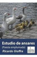 Estudio de Ansares - Ricardo Giuffra