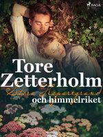 Stora Hoparegränd och himmelriket - Tore Zetterholm