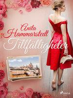 Tillfälligheter - Anita Hammarstedt