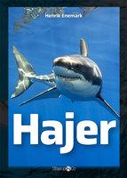 Hajer - Henrik Enemark