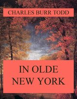 In Olde New York - Charles Burr Todd