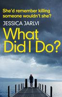 What Did I Do? - Jessica Jarlvi