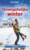 Onvergetelijke winter - Jane Porter